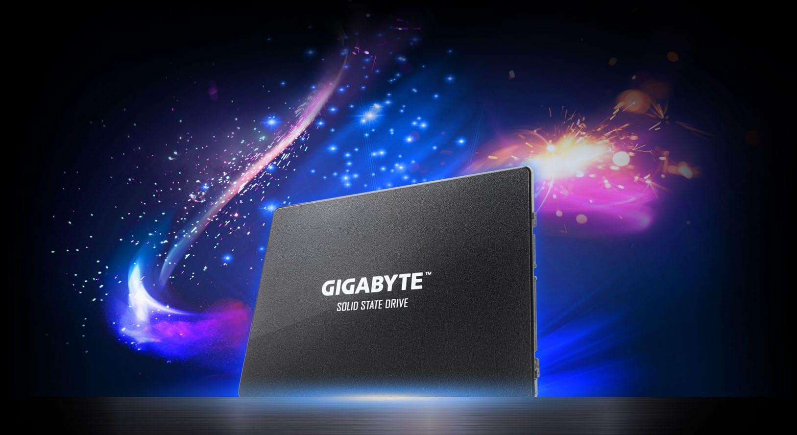 Gigabyte 2.5 Inch Internal SSD 256 GB 5